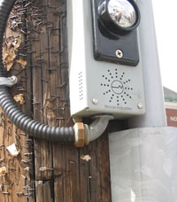 Figure 9-20. APS pushbutton mounted on wooden pole, showing conduit installed into the bottom of the pushbutton device